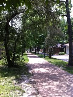 Ackert Walkway